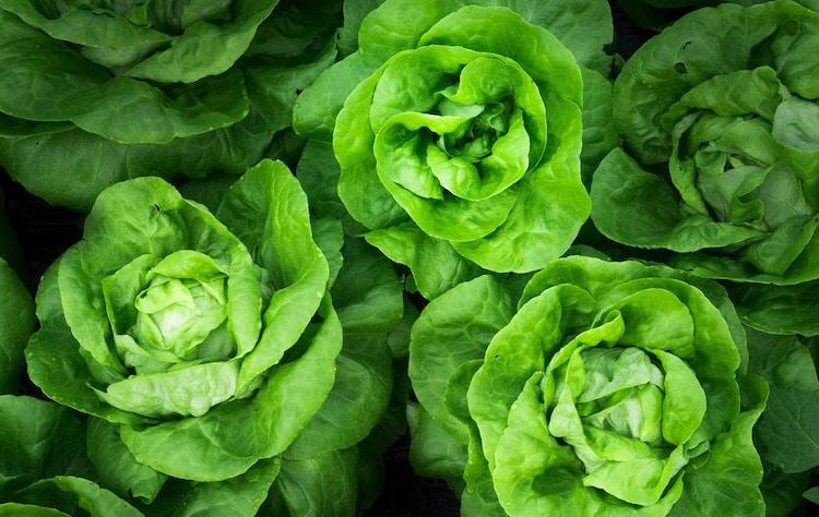 leafy greens anti inflammatory