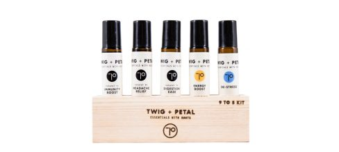 Corporate Wellness Gifts For Co-Workers And Employees Twig and Petal 9 to 5 Kit