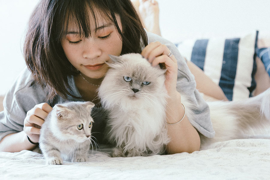 Mental and Physical Health Benefits of Pets